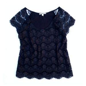 Joie Soft Black Teardrop Lace Short Sleeve Top